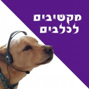 מקשיבים לכלבים פודקאסט